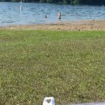 Heron Beach