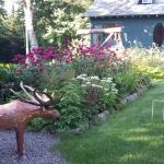 The Birches Bed and Breakfast Foto