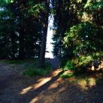lake from camper
