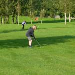 Berties Pitch and Putt