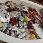 il pescato..