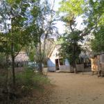 Foto de Kirindy Lodge