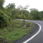 Old Highway Road Condition