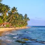 Photo of Sri Gemunu Beach Resort