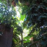 Photo of Hostal Alameda