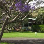 Foto de Waimea Gardens Cottage Bed and Breakfast