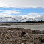 Puente El Alcaravan
