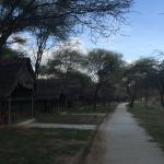 Foto di Tarangire Safari Lodge