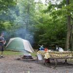 Campsite A29