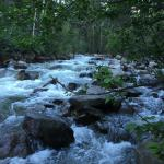 Roaring Fork River - Not at Campsite