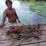 local crayfish catch
