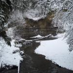 Mill Creek Ravine Park