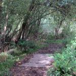 Walton Colliery Nature Park