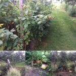 The gardens and Peach Orchard