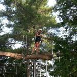 Aerial park adventure