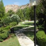 Gardens around the hotel
