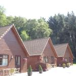 Complex of 11'lodge style' self catering holiday cottages near Devon