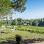 Relaxing place to sit while gazing at the Chateau Tournefeuille vineyard