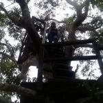 TOUR AMAZON