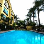 Enjoy our Outdoor Pool with Loungers