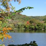 View of Radnor Lake from Otter Creek Road