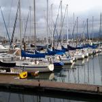 View of Oakland Yacht Club Marina