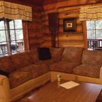 Hamilton Cabin - Living Room