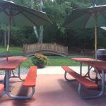 Back yard dining !
