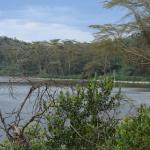 View of Crater Lake, Naivasha from the shores.