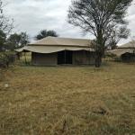 Tents at Mbugani