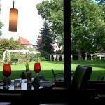 Blick aus dem Restaurant in den Hotelgarten