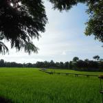 Palm Spa Village Resort Foto