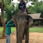 Photo de Elephant Adventures by Green Discovery Laos