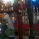 Beers on Tap at Adobe Cafe Roxborough Philadelphia