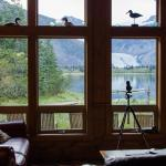 View from within the lodge