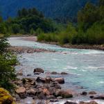 Chekamus river
