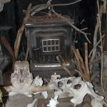 Fireplace and nice collection of bones