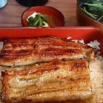 ข้าวหน้าปลาไหลเนื้อนุ่ม