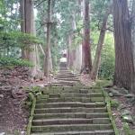 数百年が経過した杉林が覆う境内へ向かう石段