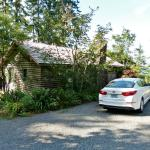 Back of cabin Elinor and parking space.