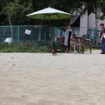 飛行犬撮影に挑戦