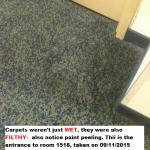 Carpet at room entrance. Filthy and WET