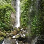 water fall in halimun salak national park