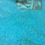 Sac de plastique fond de la piscine et céramiques manquantes