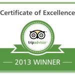 Excellence Badge 2013