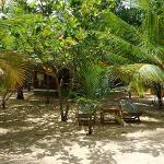 Patini Bungalows - Beach Garden Foto