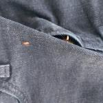 Bed bug found crawling on my jeans on the hotel bed.