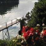 Photo de Coracle Cove Waterfront Suite