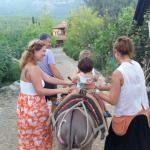 Donkey ride before dinner