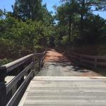 Foto de Junction and Breakwater Trail